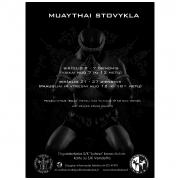 Muay thai stovykla 2014 m.